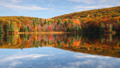 Fall Foliage Prediction Map 2020.The Best Destinations For Fall Foliage In 2019