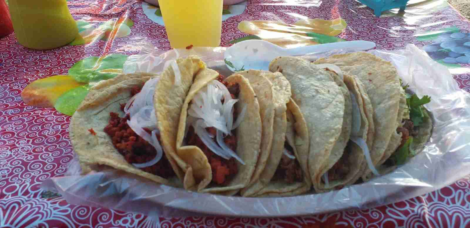 The author regularly defaulted to street tacos for serving her family an inexpensive meal (Terry-Ward.com)