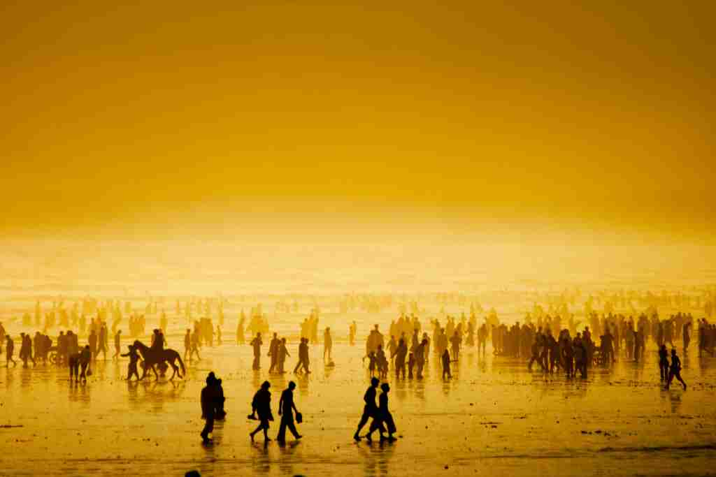Silhouette of people walking on beach at sunset.