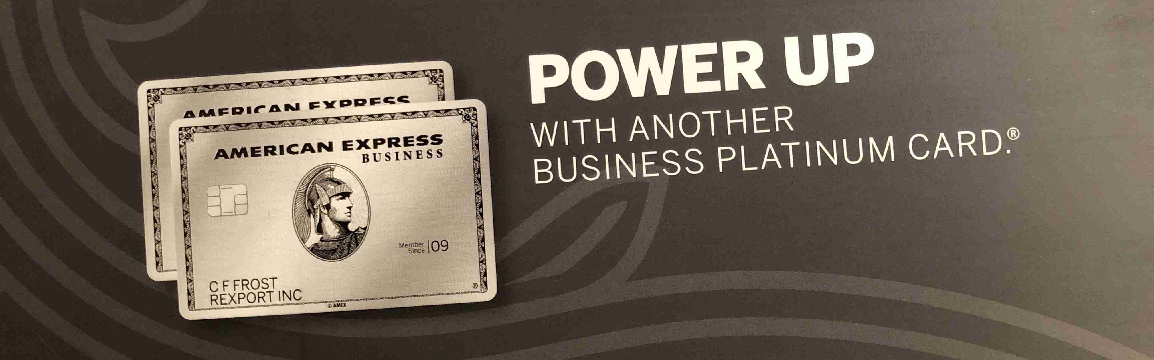 american express business platinum second card