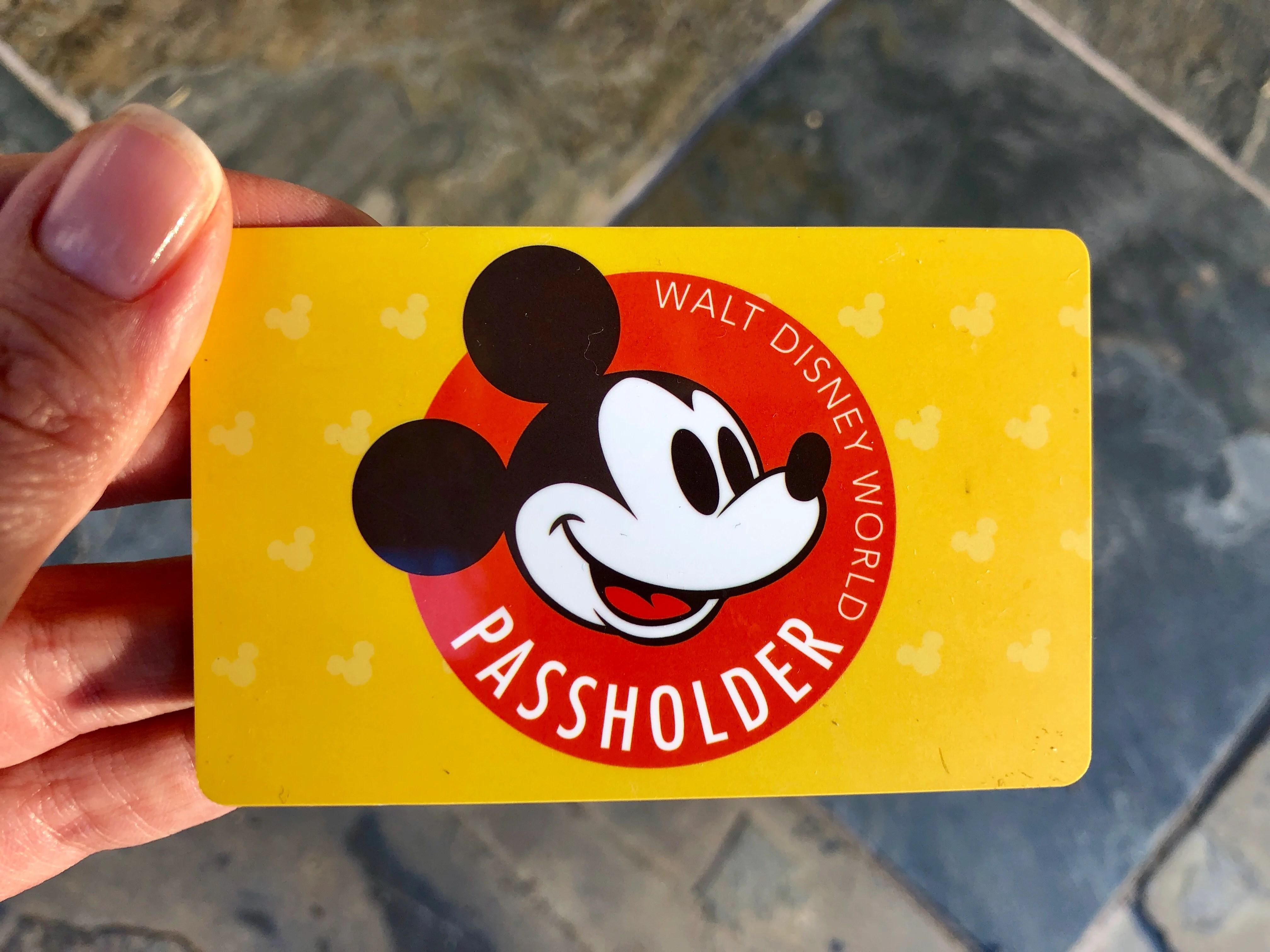 How A Disney World Annual Pass Can Save Your Family Money