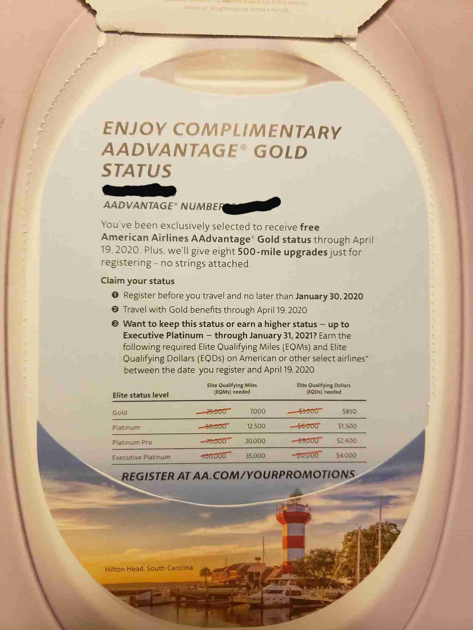 Offer for complimentary Gold status in AA mailer. (Photo courtesy Sarah in the TPG Lounge)