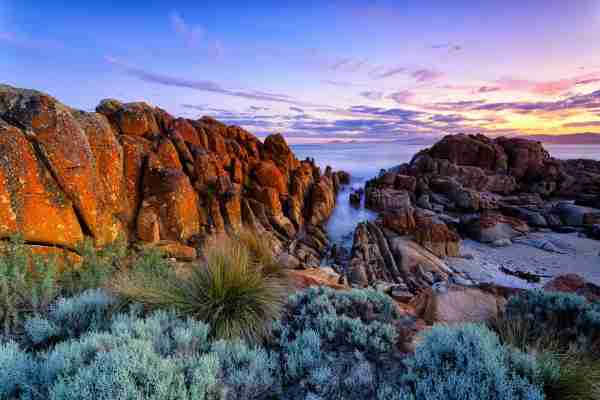Tasmania. (Photo by Visual Collective/Shutterstock)