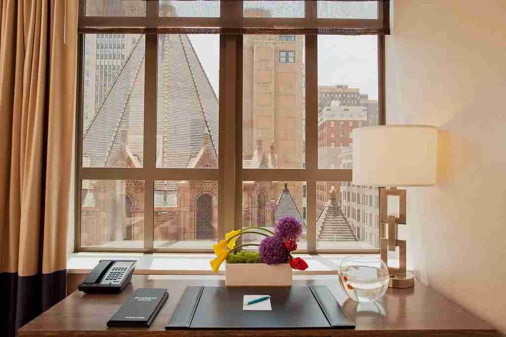 The pet goldfish on the desk in the room. (Photo courtesy of Kimpton Hotel Palomar)