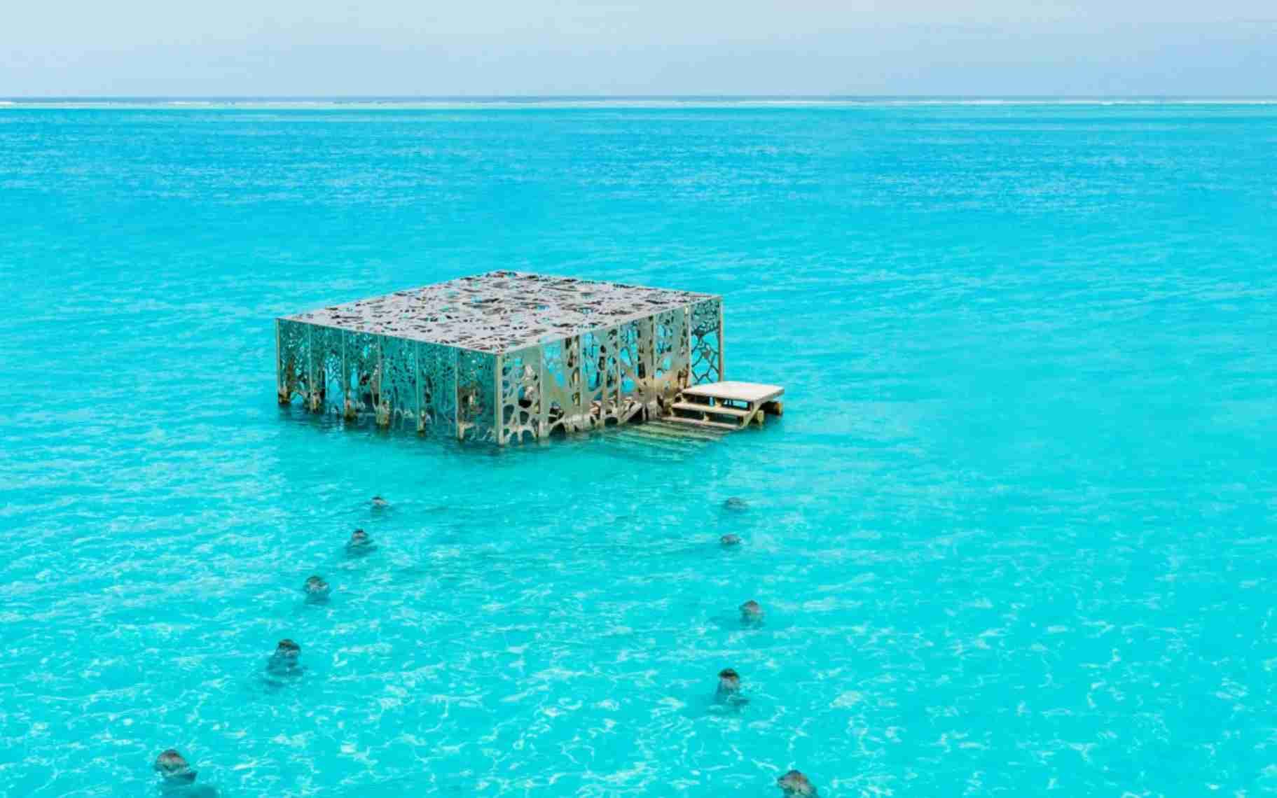 (Photo courtesy of the Fairmont Maldives)