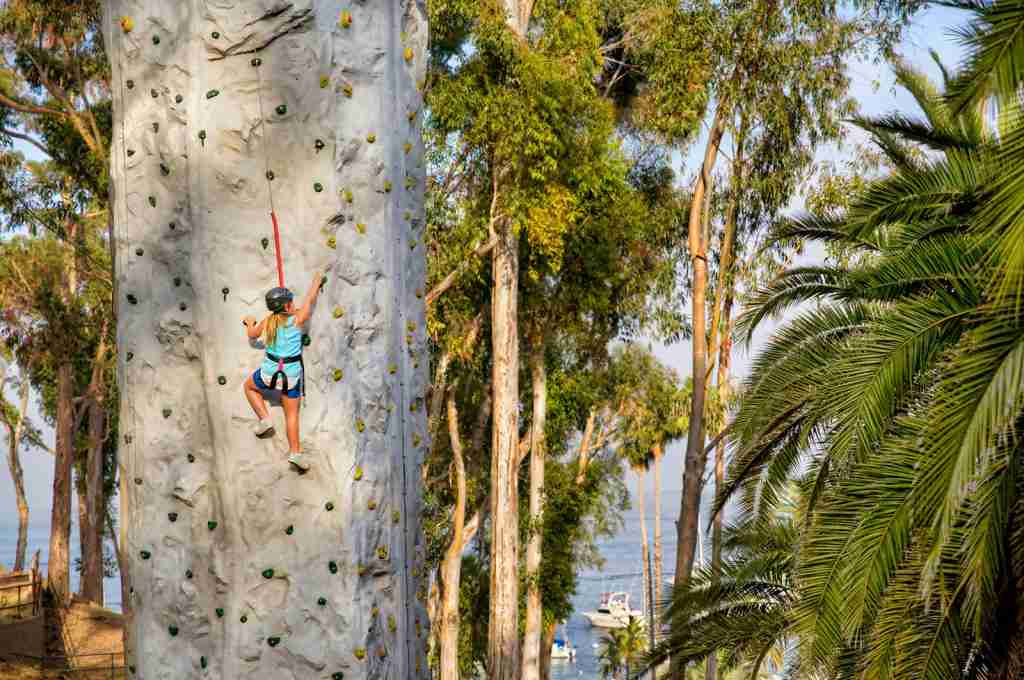 Catalina Climbing Wall