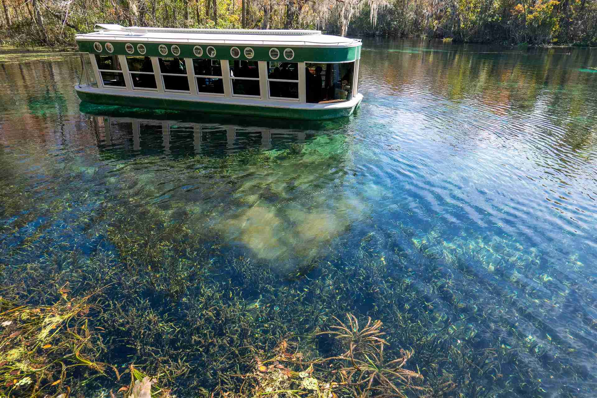 Silver Springs State Park - glass bottom boat - Florida