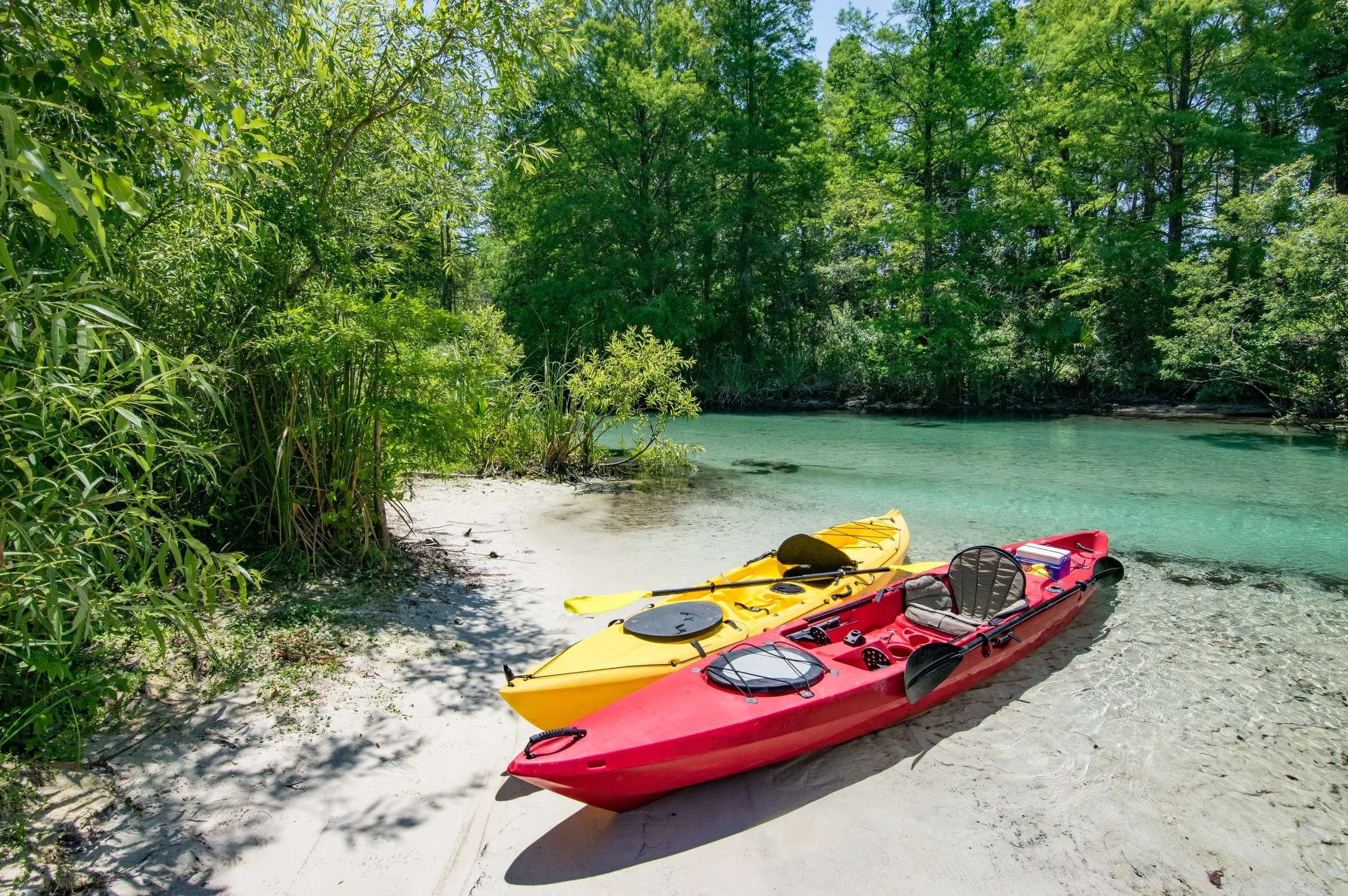 These 12 state parks will make you fall in love with Florida