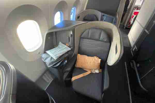 Business class on board Turkish Airlines