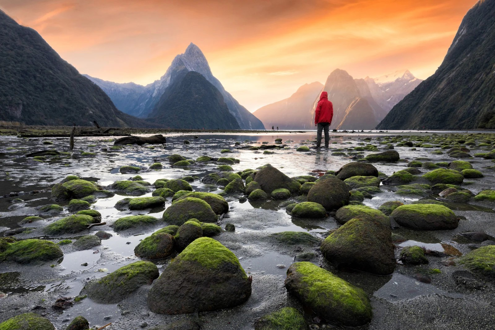 Searching for a unicorn: My dream trip to New Zealand on points and miles