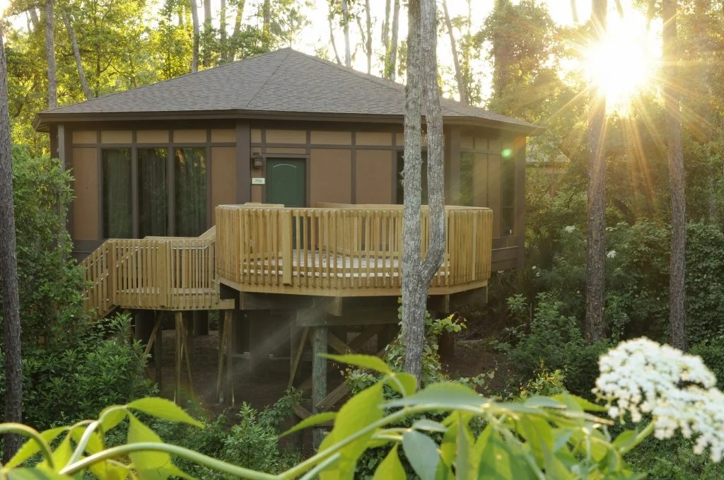 Disney Treehouse Villas (Image courtesy of Disney Parks)