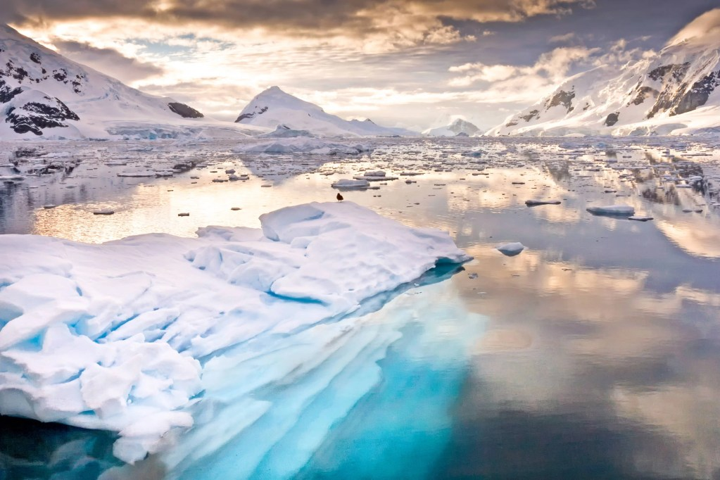 Dreaming of Antarctica: How to book the trip of a lifetime