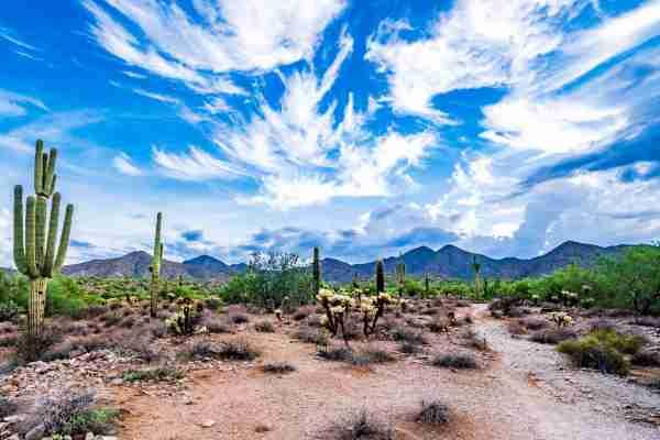 Scottsdale, Arizona (Photo by Thomas Roche / Getty Images)