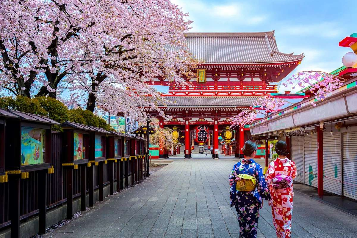 Fly in first or business class to Tokyo for the 2021 cherry blossoms