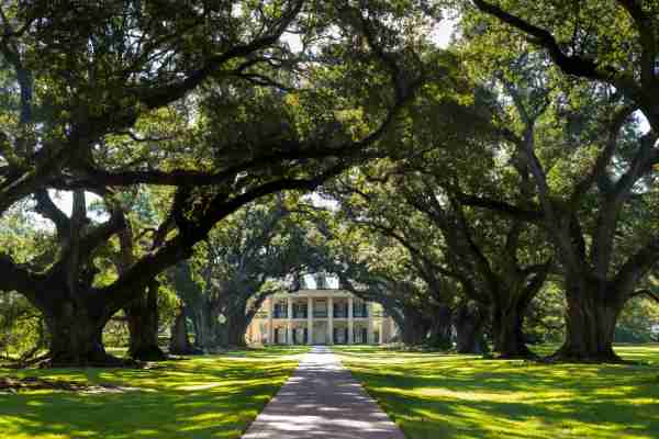 Oak Alley Plantation in Vacherie, Louisiana. (Photo by Tim Graham/Getty Images)