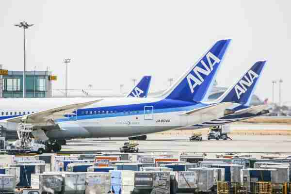 ANA Planes Lined Up at PEK Airport
