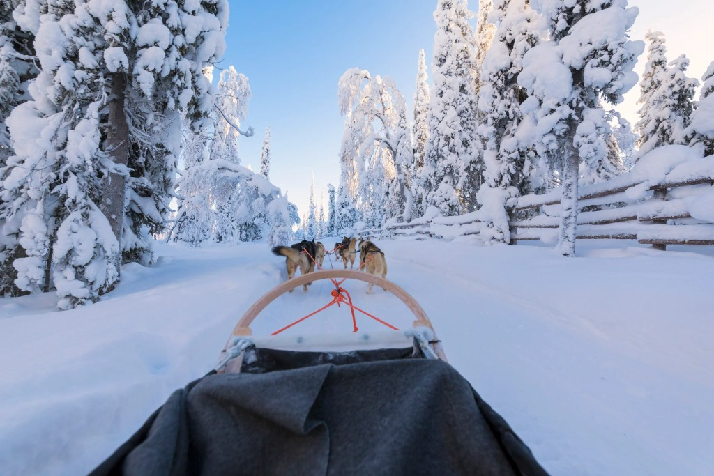 Dog sledding can be a great non-ski-day activity image by Roberto Moiola / Sysaworld / Getty Images)