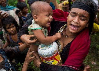 Rohingya Deaths are Much Higher than the Official Figure, Says Report