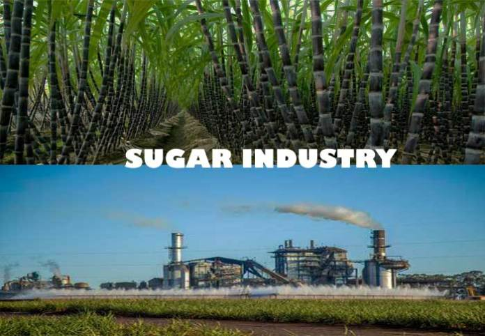 The Bittersweet Issues in the Sugar Industry