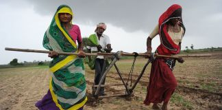 After husband's death 29% farmers are fighting for their land rights