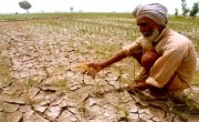 Modi government engaged in celebrating angry farmers