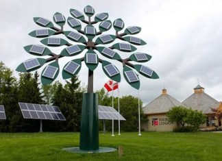 CPWD will set up 'solar tree' in residential complexes of central government employees