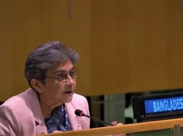 Sufficient and sustained peacekeeping budget is critical for the peacekeeping missions to carry out the diverse mandates -- Ambassador Rabab Fatima the policy times