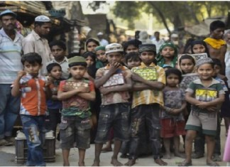 Rethinking Sustainable Solution to Rohingya Crisis: Limits of WB's Proposal
