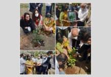 Plantation of trees on the occasion of the 47th Anniversary of Bangabandhu's Historical Speech in Bangla at UNGA
