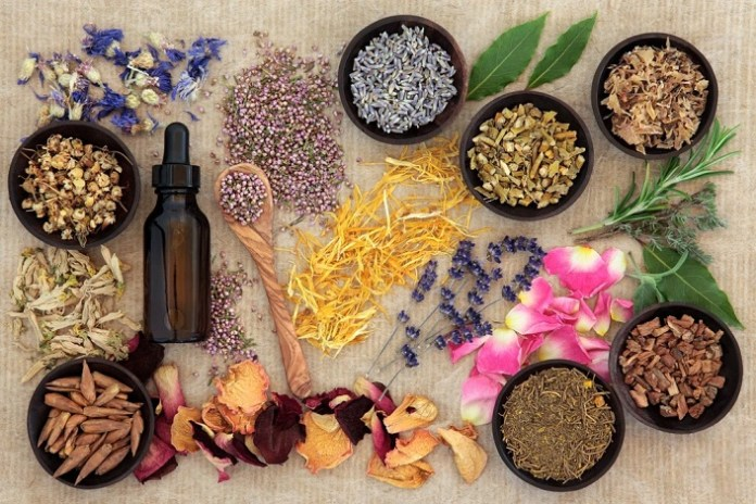 India to collaborate with American Herbal Pharmacopoeia; strengthening the quality of Ayurvedic and other Indian Traditional Medicine products globally
