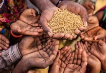 Dip in India's rank in Global Hunger Index 2021 'shocking', says govt