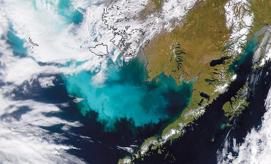 Algae Bloom in the Bering Sea.