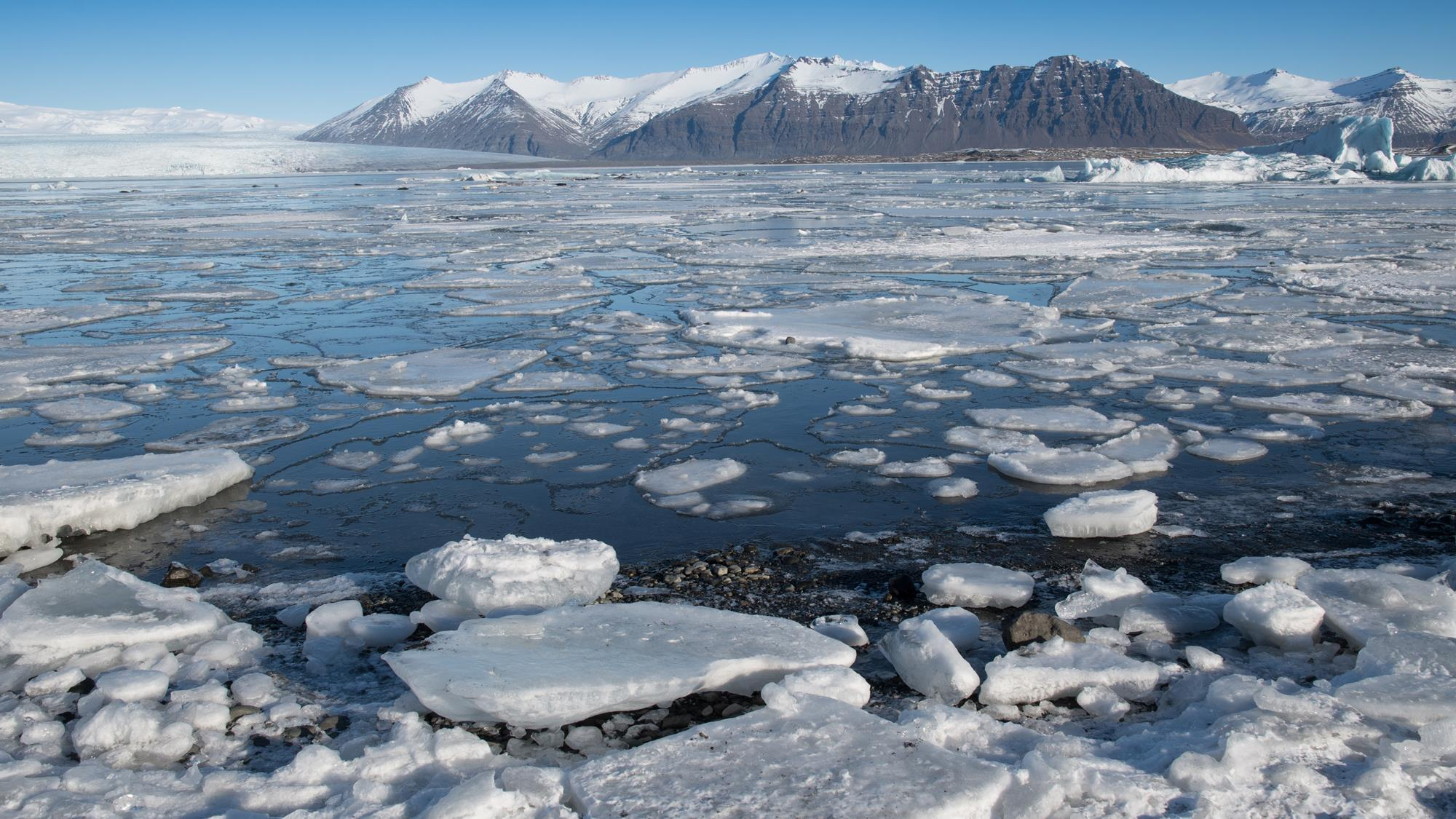 , The speed of Abrupt Climate Change accelerates upheaval in the Arctic. And, summer 2020 is coming., The Politicus