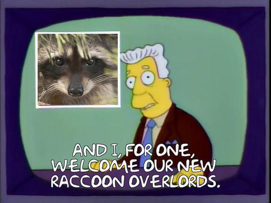 , all we need is a raccoon as a flag officer at Space Force, The Politicus