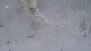 Zombie fire in Yakutia