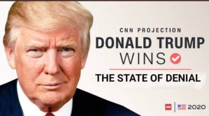 , Manifestly losing his mind, Trump calls CNN 'dumb b*stards' for covering COVID, The Politicus