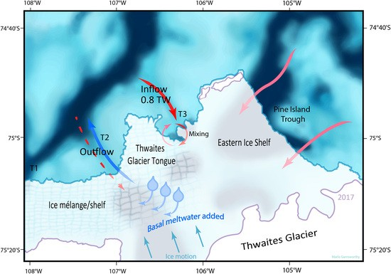 Red arrows indicate main pathways of warm salty water, blue arrow indicates outflow of meltwater-laden fresher water, and red dashed arrow indicates possible warm salty inflow below the range of the ship-borne ADCP. Blue shading shows bathymetric troughs, and purple lines indicate grounding zones. The two arrows from Pine Island Trough indicate that it is not possible from the present dataset to identify which part of this region sources the deep water.