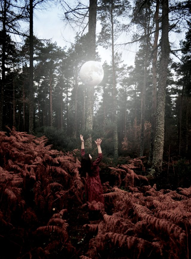 Moon shines through trees onto a woman with her arms outreached