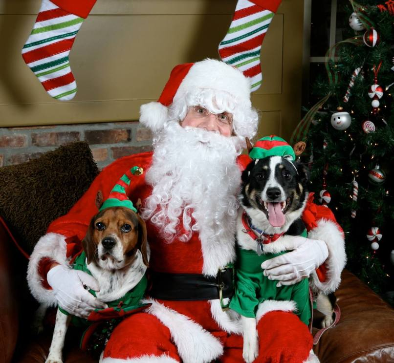 Santa likes furry kids too!. Photo by Vandreena/VNC