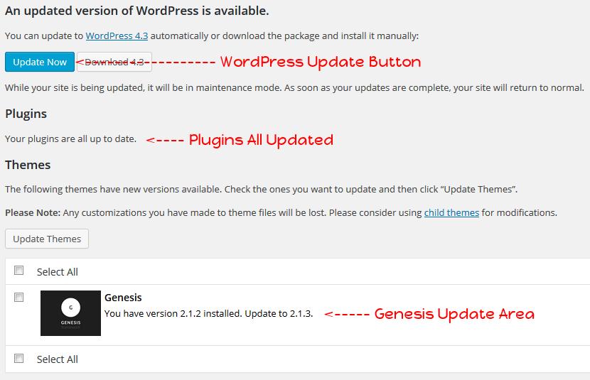Update Update