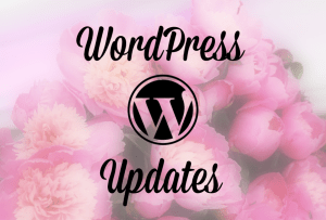 WordPress 4.7 Update: Problems!