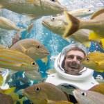 Nadar con peces en Sea World ayuda a salvar los arrecifes