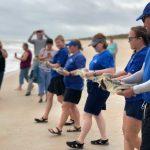 SeaWorld Rescue regresa al océano atlántico 15 tortugas rehabilitadas