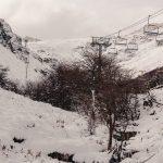 La primera nevada y una inusual presencia de guanacos en Esquel