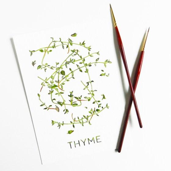 Printable Artwork: Thyme {Watercolor} | The Postman's Knock