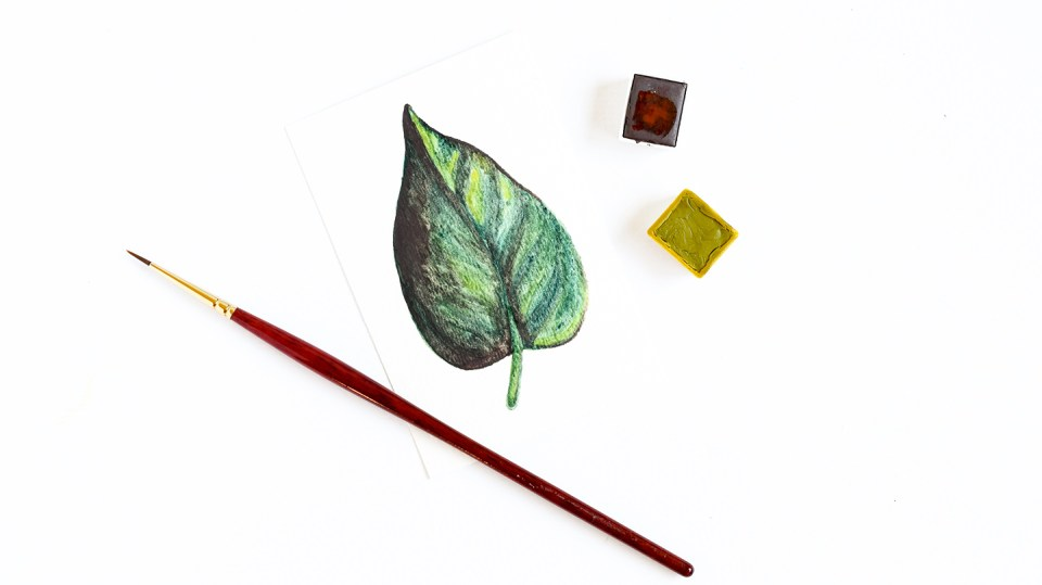Three Watercolor Leaves Tutorials | The Postman's Knock