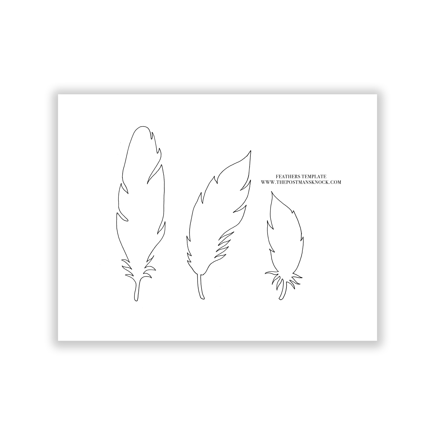 Paper feathers template the postman s knock