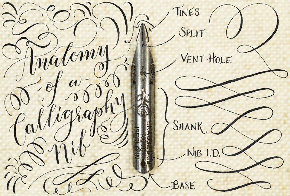 The Lowdown on Calligraphy Nibs | The Postman's Knock