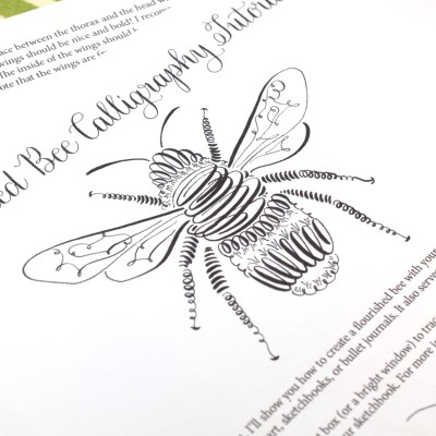 Free Printable Instructions – Flourished Bee Calligraphy Tutorial
