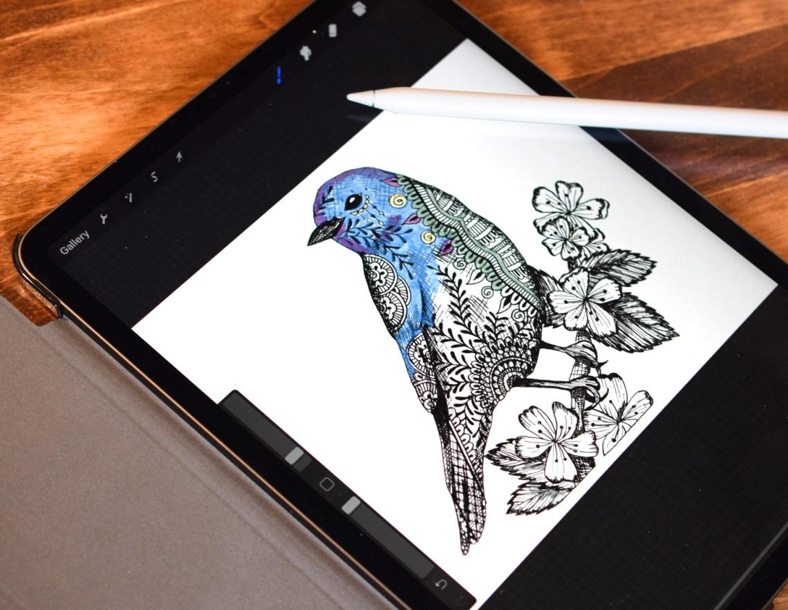 Henna Bluebird Illustration | The Postman's Knock